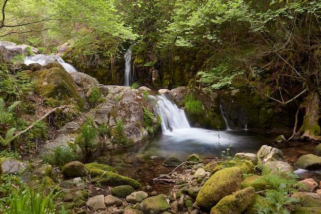 Pequena cachoeira do rio treito, conhecida como baston, é uma piscina natural em um ambiente de grande beleza.
