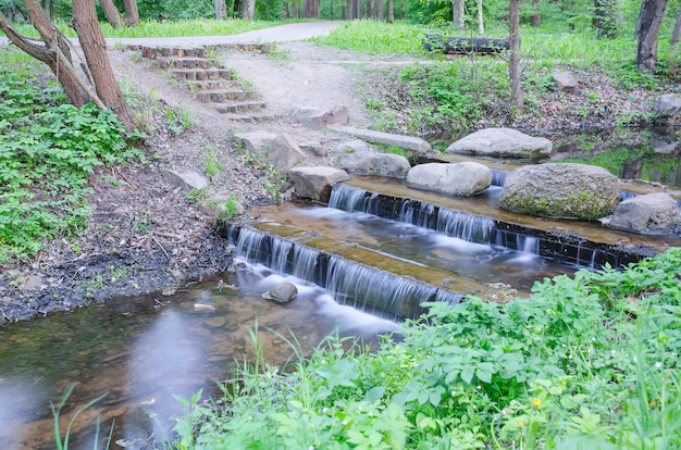 Pequena cachoeira em um pequeno riacho pitoresco na floresta
