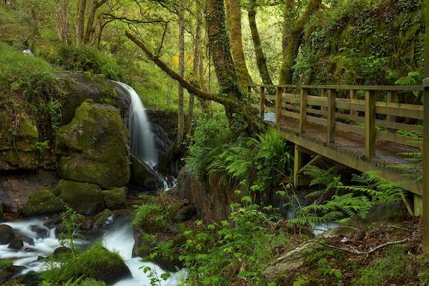 Pequena cachoeira formada no rio arenteiro, na região da galiza, espanha.