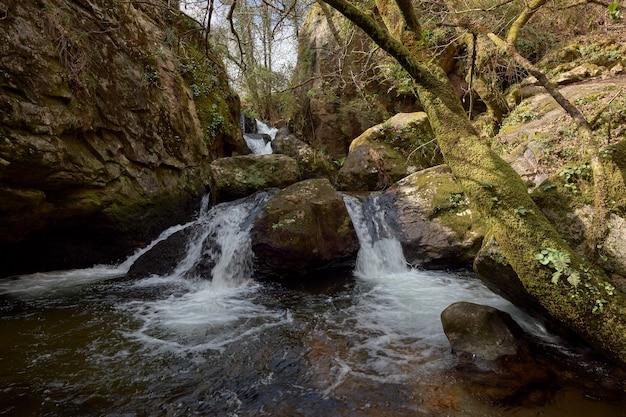 Pequena cachoeira formada pelo rio teo na região da galiza, espanha.