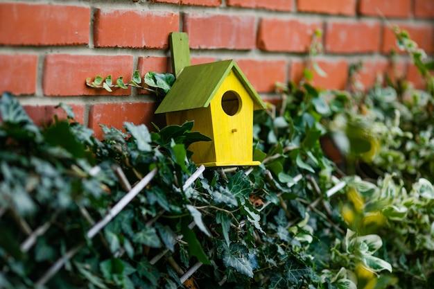 Pequena casa de passarinho em uma árvore