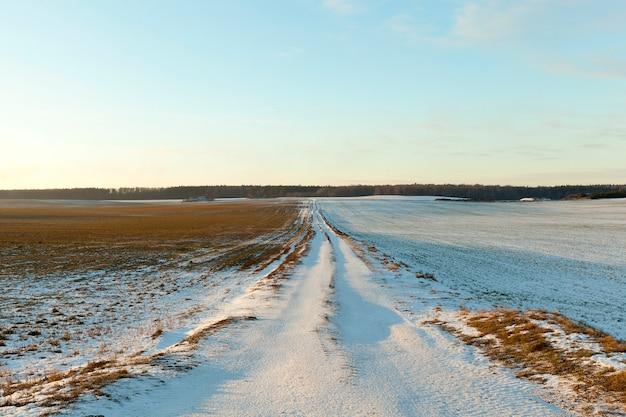 Pequena estrada rural coberta de neve no inverno