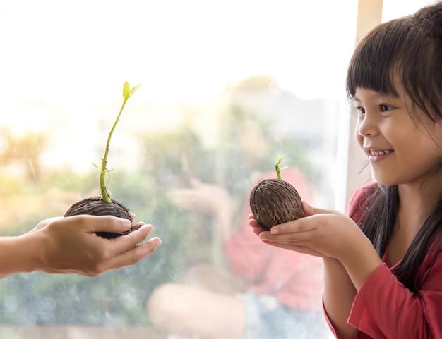 Pequena menina criança mãos segurando uma planta pequena da mão de adulto