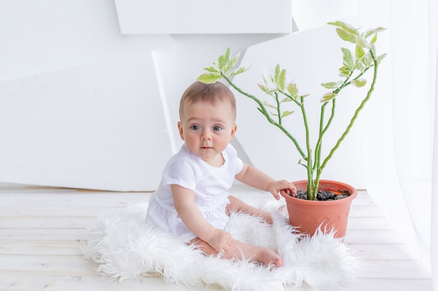 Pequena menina de 6 meses de idade, sentada em roupas brancas em um apartamento brilhante na janela com uma flor do quarto, cuidados com as plantas bebê