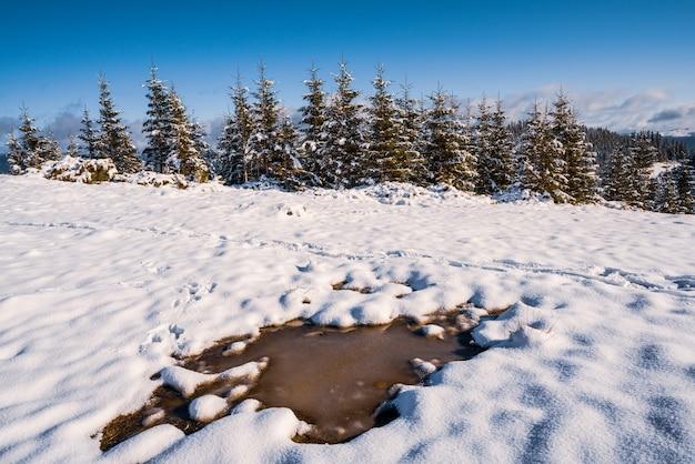 Pequena poça de neve branca derretida sob o sol quente da primavera nas incomuns montanhas dos cárpatos