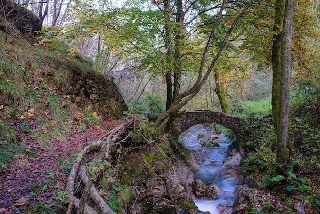 Pequena ponte antiga de rochas em um riacho na floresta no outono