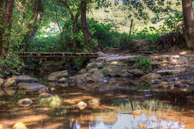 Pequena ponte de madeira no riacho