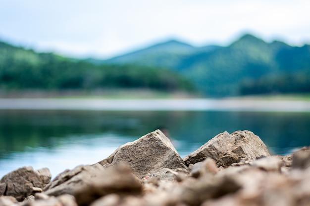Pequena rocha na floresta.