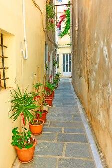 Pequena rua lateral com vasos de flores na cidade de rethymno, creta, grécia