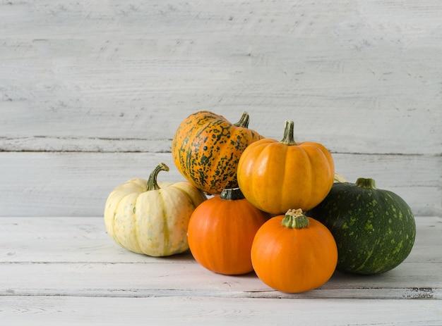 Pequenas abóboras decorativas de diferentes cores laranja, branco e verde mentem sobre um fundo de madeira