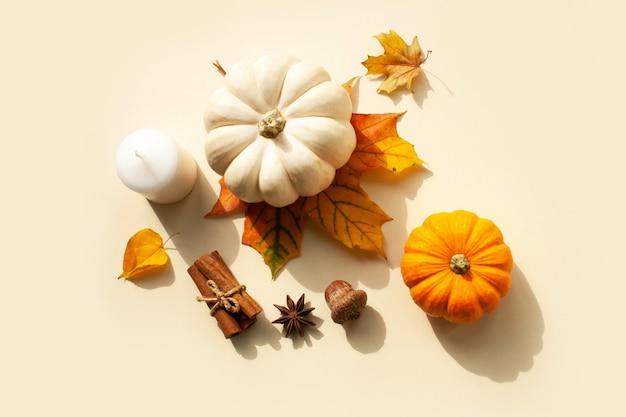 Pequenas abóboras decorativas e folhas de outono em um fundo branco. estilo liso