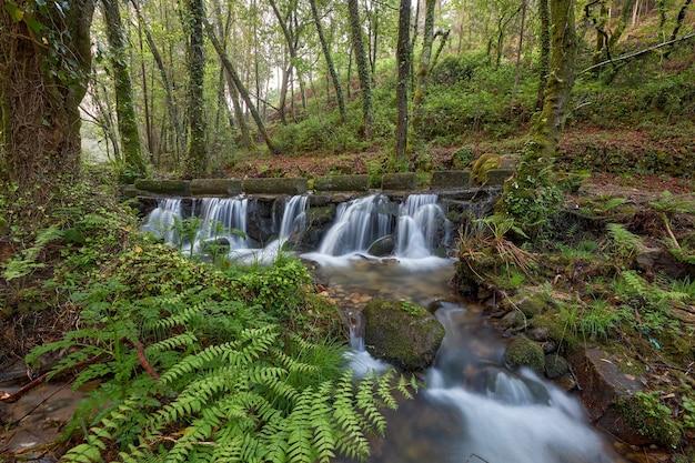 Pequenas cachoeiras formadas pelo rio tripes no parque natural do parque monte aloia, na região da galiza, espanha.