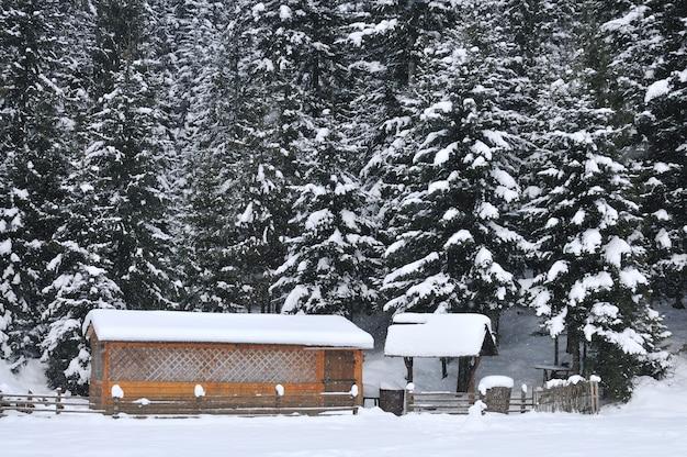 Pequenas casas de madeira em um fundo de uma bela floresta de montanhas nevadas