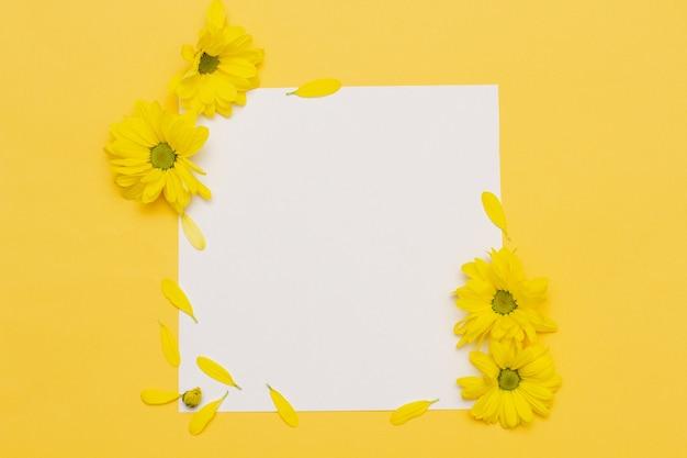 Pequenas flores amarelas com pétalas espalhadas repousam sobre um fundo amarelo pastel com um quadrado vazio no centro