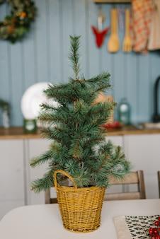 Pequeno abeto decorativo de natal em uma cesta em uma mesa na casa