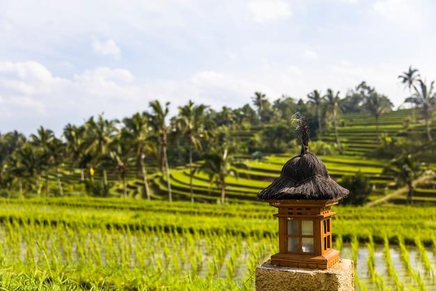 Pequeno altar nos campos de arroz de jatiluwih no sudeste de bali