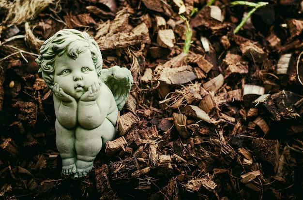Pequeno ângulo parece solitário no jardim: foco suave