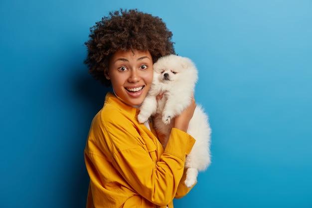 Pequeno animal de estimação com pedigree descansa em casa nas mãos de uma mulher. feliz dona do animal posa com seu novo amigo, feliz depois que o veterinário examinou que o cachorro está saudável