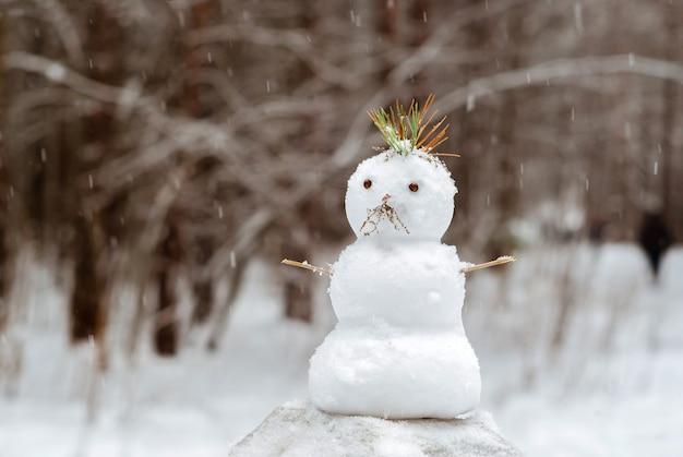 Pequeno boneco de neve com um moicano de agulhas de pinheiro sob uma nevasca