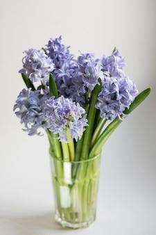 Pequeno buquê de flores azuis jacinto primavera