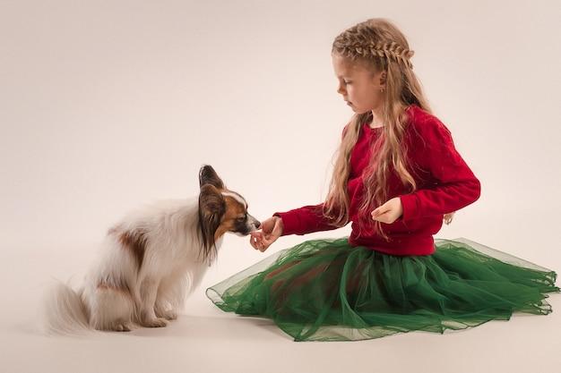 Pequeno cachorro bocejando papillon
