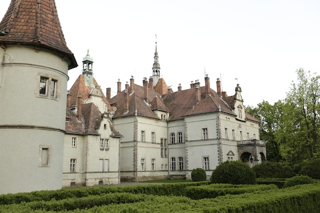 Pequeno castelo com grama verde na frente. foto de alta qualidade