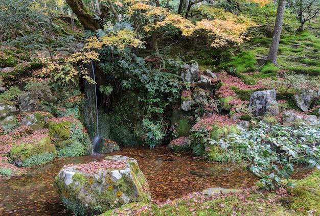 Pequeno jardim com cachoeira com folhas de bordo caídas no terreno do templo ginkakuji em kyoto, japão