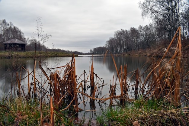 Pequeno lago na floresta no outono
