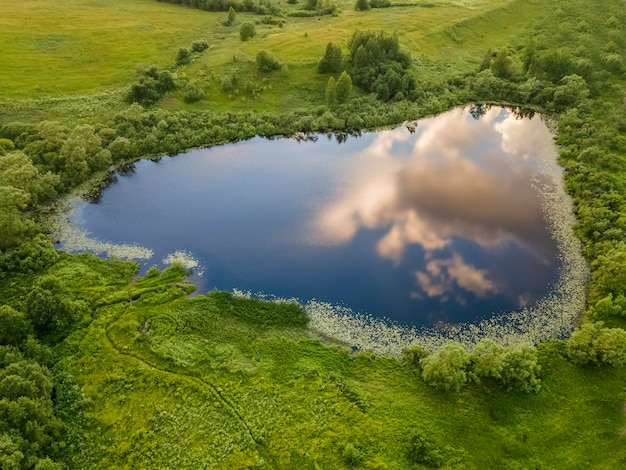 Pequeno lago no qual o céu e as nuvens são refletidos, grama verde e árvores ao redor do lago