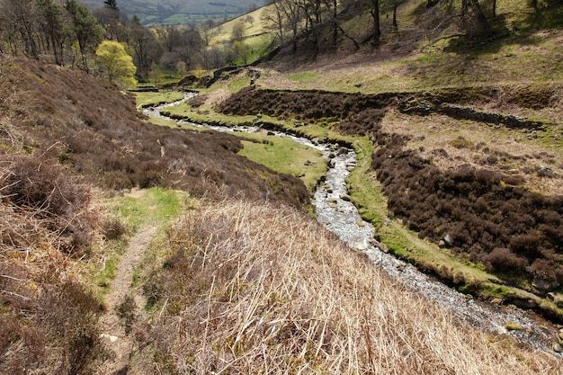 Pequeno rio cercado por colinas cobertas de vegetação sob a luz do sol no reino unido