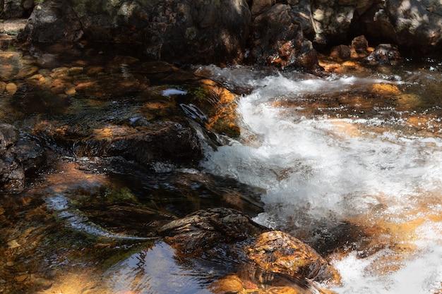 Pequeno rio rápido com águas claras e pedras.