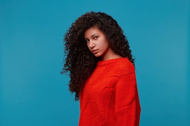 Perfil de uma bela mulher latina hispânica calma em meia volta parece carrancuda, com longos cabelos escuros cacheados ondulados em um suéter vermelho isolado sobre a parede azul do estúdio