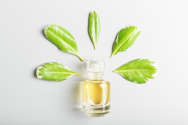 Perfume e folhas verdes em um fundo cinza.