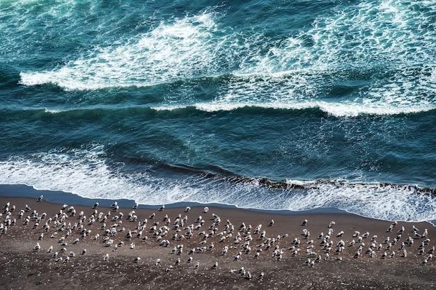 Perigo da onda do mar batendo na costa rochosa com spray e espuma antes da tempestade