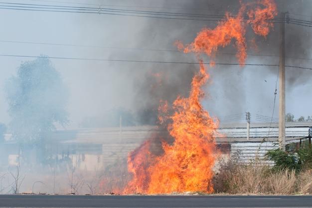 Perigo de incêndio, árvores à beira da estrada, fios elétricos, muita fumaça preta flutuando no céu