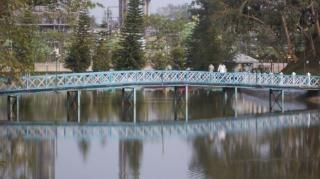 Perigo ponte