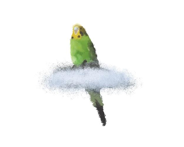 Periquito verde sentado em uma nuvem em um fundo branco isolado