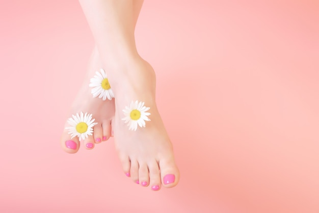 Pernas das mulheres em um fundo rosa. decorado com flores de camomila. cosméticos naturais, spa, pedicure, conceito de cuidados com a pele