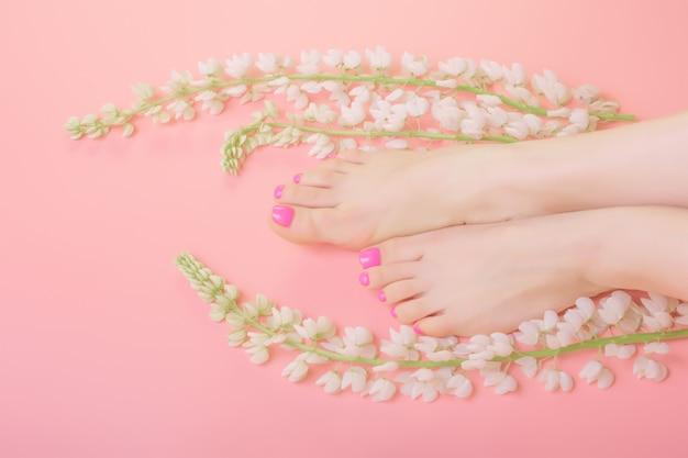 Pernas de mulheres bonitas com flores brancas em fundo rosa, tratamento saudável e salão de spa de beleza, conceito de skincare