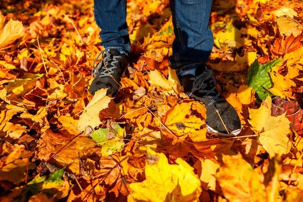 Pernas de tênis e jeans de pé no chão com folhas de outono