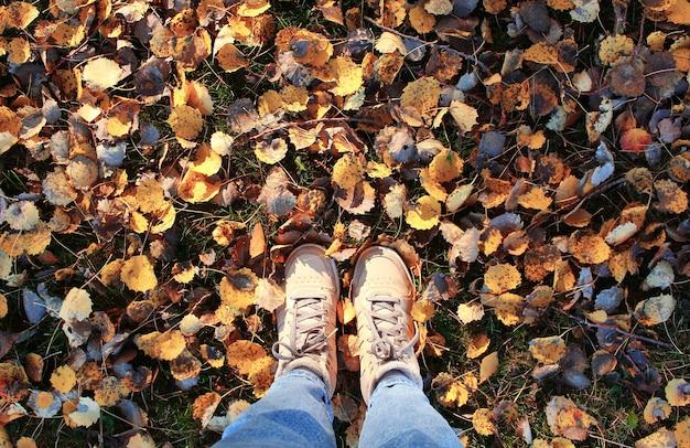 Pernas femininas de tênis e jeans em pé no chão com folhas de outono