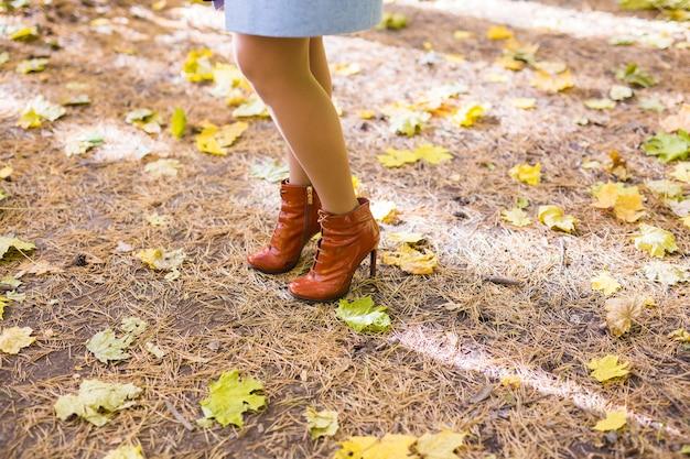 Pernas femininas em meia-calça preta e sapatos elegantes, botas, folhas douradas ao ar livre
