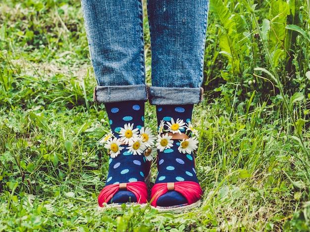 Pernas femininas, sapatos da moda e meias brilhantes