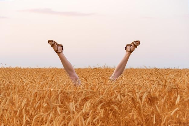 Pernas saindo de um campo de trigo