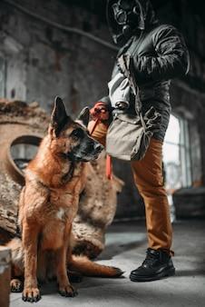 Perseguidor com máscara de gás e cachorro em ruínas, sobreviventes