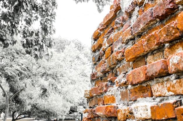 Perspectiva da parede de tijolos no parque