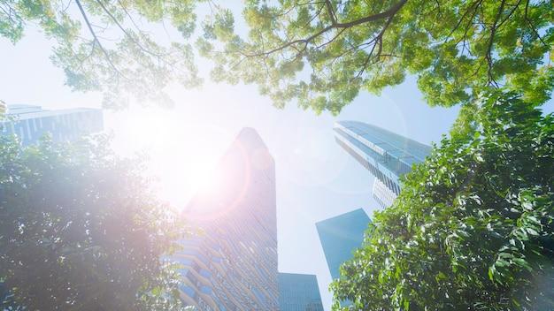 Perspectiva exterior padrão parede de vidro azul modernos edifícios com folhas de árvore verde