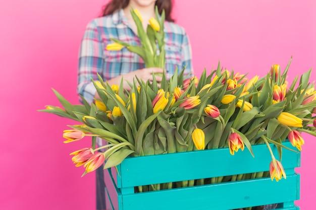 Perto da caixa de madeira brilhante com tulipas amarelas em estúdio rosa.