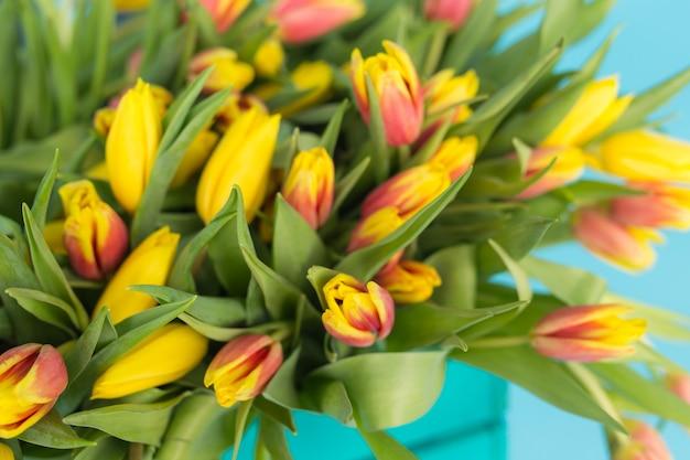 Perto da caixa de madeira brilhante com tulipas amarelas na parede azul