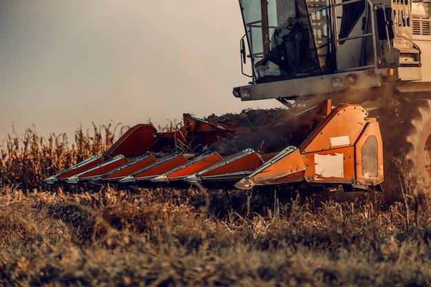Perto da ceifeira-debulhadora de milho no campo no outono. maquinaria na agricultura.